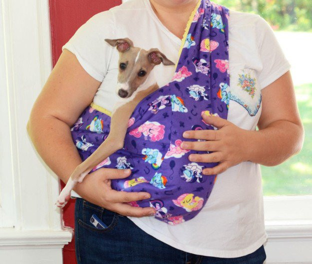 Best ideas about DIY Dog Sling . Save or Pin 25 Easy and Simple DIY Pet Projects Now.