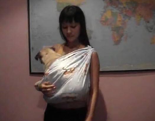 Best ideas about DIY Dog Sling . Save or Pin DIY Dog Sling Carrier petdiys Now.