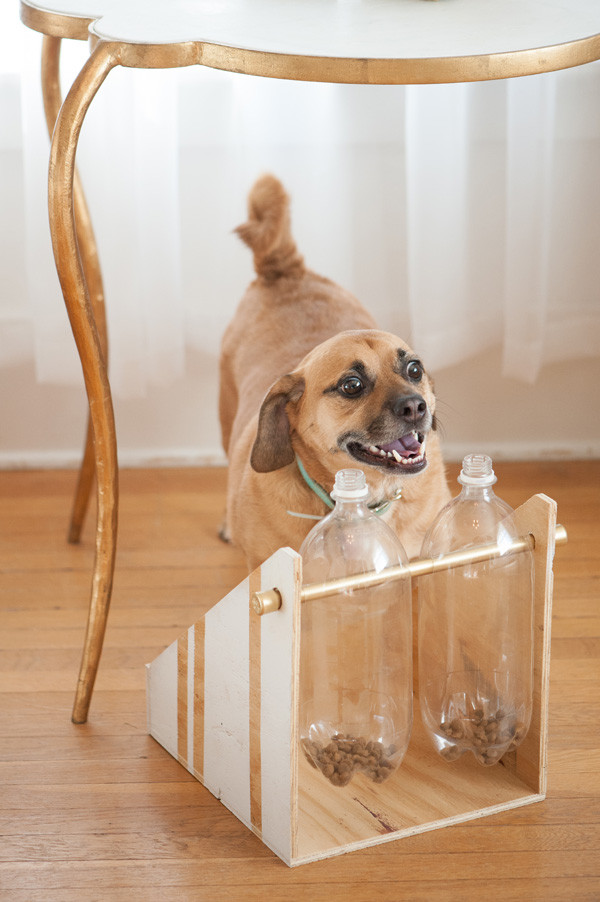 Best ideas about DIY Dog Treat Dispenser . Save or Pin DIY Treat Dispenser PAW2014 Daily Dog TagDaily Dog Tag Now.