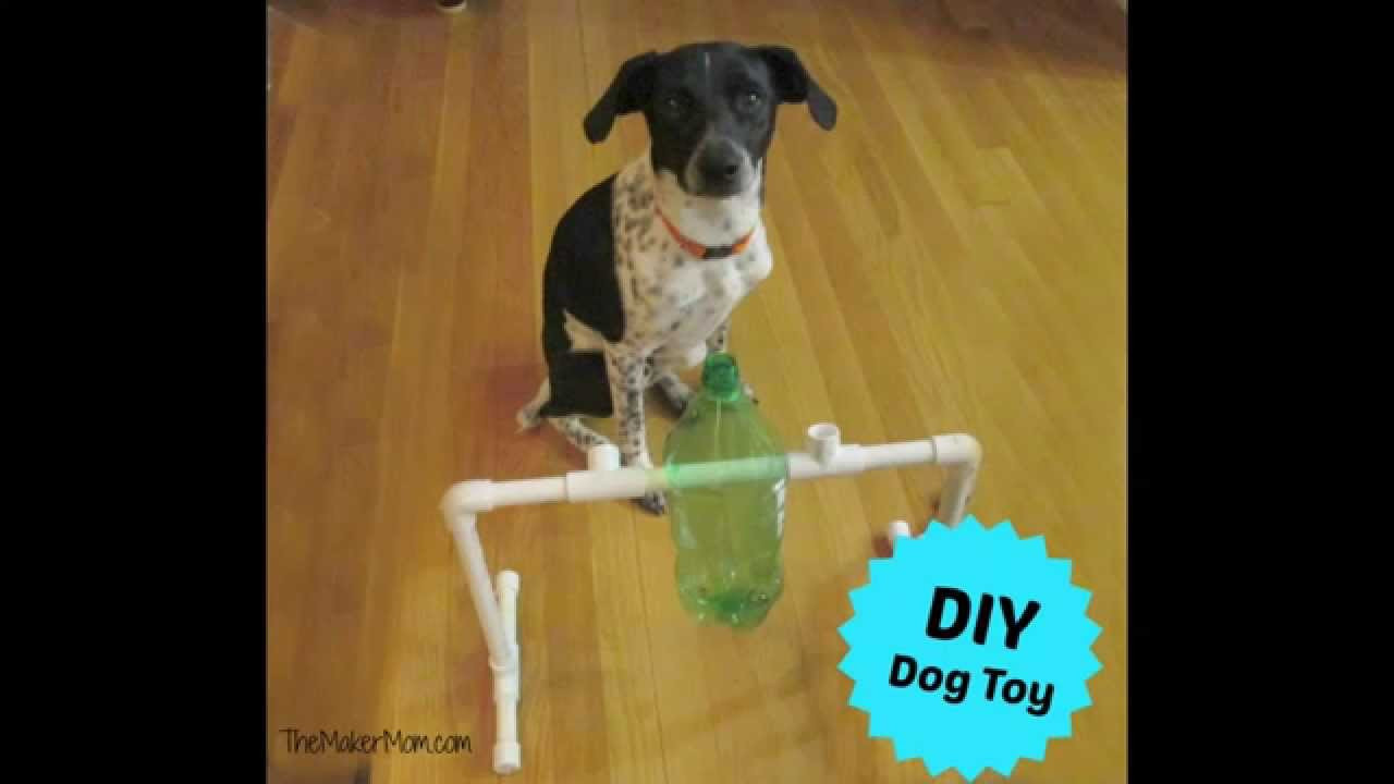 Best ideas about DIY Dog Treat Dispenser . Save or Pin Fun DIY Dog Toy and Treat Dispenser Now.