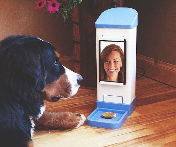 Best ideas about DIY Dog Treat Dispenser . Save or Pin 25 best ideas about Dog treat dispenser on Pinterest Now.