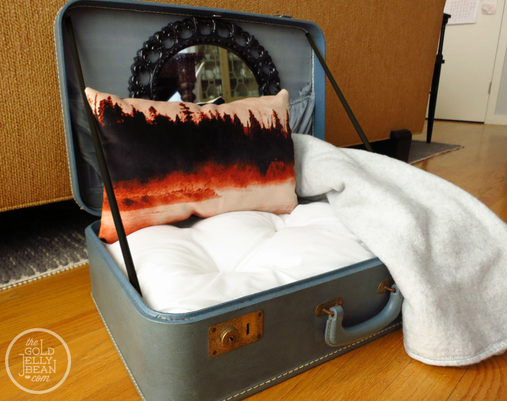 Best ideas about DIY Doggie Bed . Save or Pin DIY Vintage Suitcase Dog Bed Now.