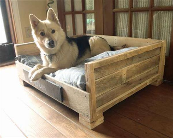 Best ideas about DIY Doggie Bed . Save or Pin 8 DIY Pallet Beds For Dogs Now.