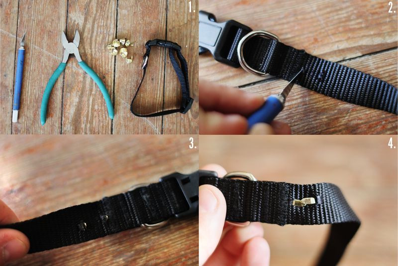 Best ideas about DIY E Collar For Dog . Save or Pin DIY Studded Doggie Collar A Beautiful Mess Now.