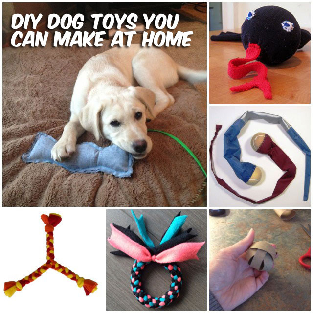 Best ideas about DIY For Dog . Save or Pin 37 Homemade Dog Toys Made by DIY Pet Owners Now.