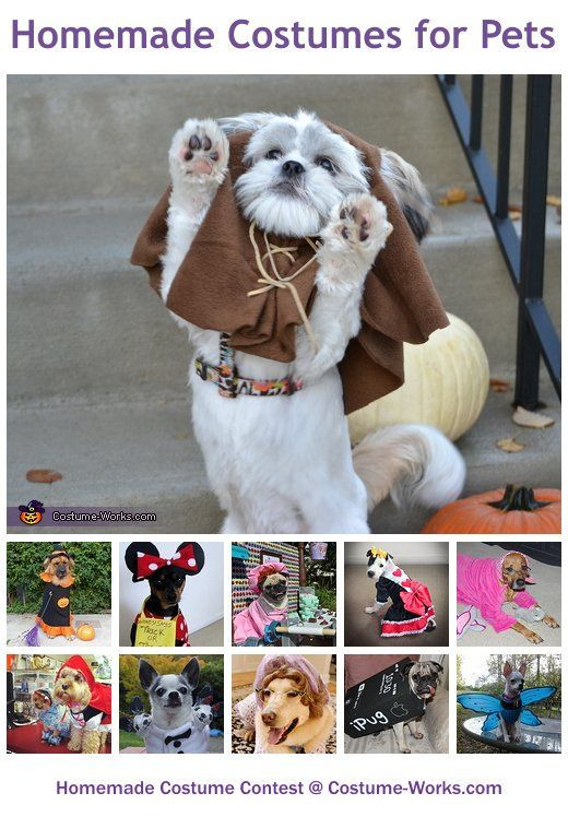 Best ideas about DIY For Dog . Save or Pin Dog Costumes Homemade on Pinterest Now.