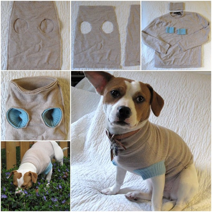 Best ideas about DIY For Dog . Save or Pin DIY Upcycle old Sweater into Cute Pet Clothes Now.