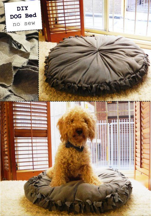 Best ideas about DIY For Dog . Save or Pin 110 best images about DIY for Animal Shelters on Pinterest Now.