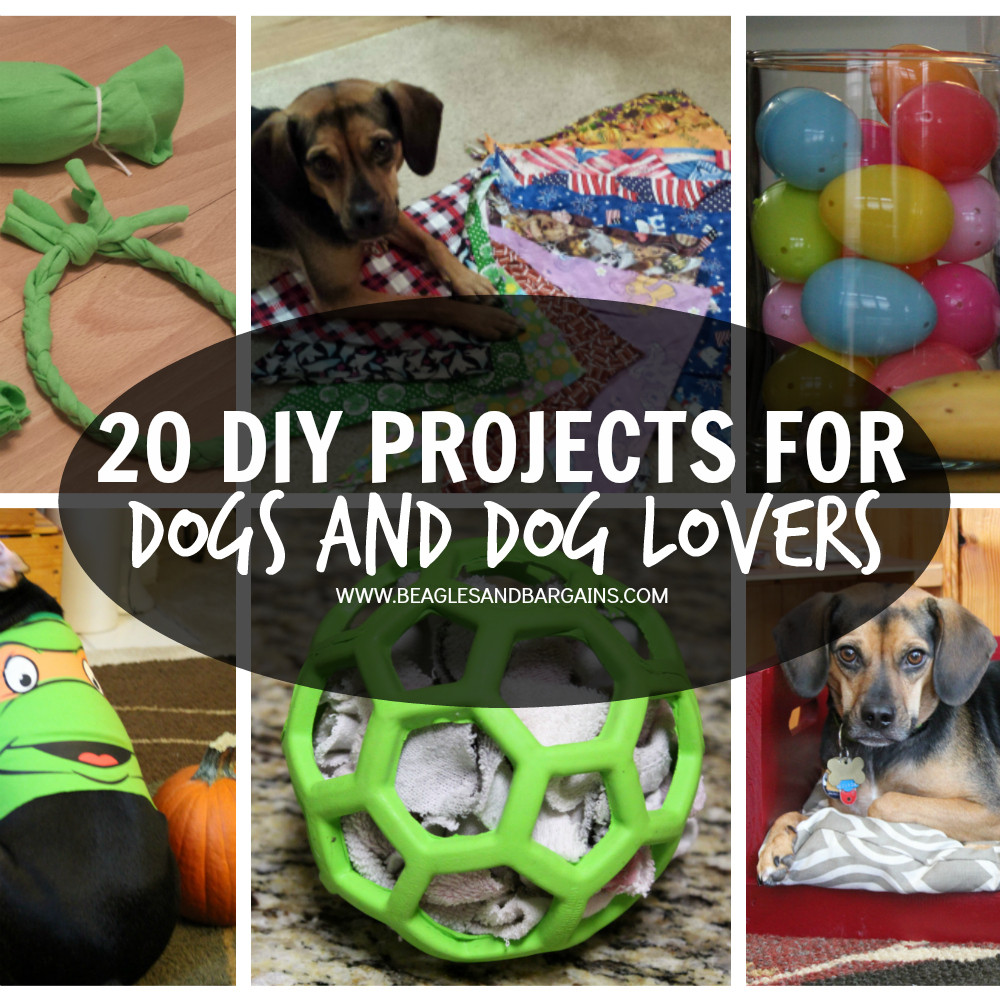 Best ideas about DIY For Dogs . Save or Pin 20 DIY Projects for Dogs and Dog Lovers Now.