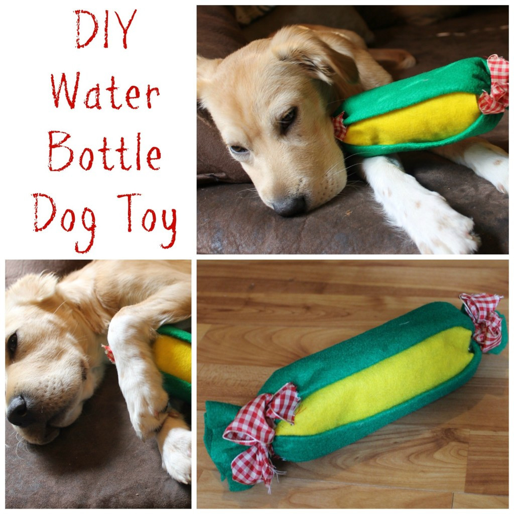 Best ideas about DIY For Dogs . Save or Pin Easy DIY Water Bottle Dog Toy Now.