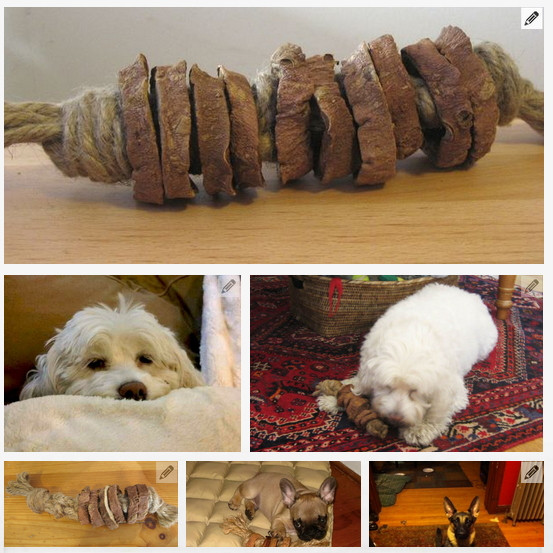 Best ideas about DIY For Dogs . Save or Pin 44 Really Cool Homemade DIY Dog Toys Your Dog Will Love Now.