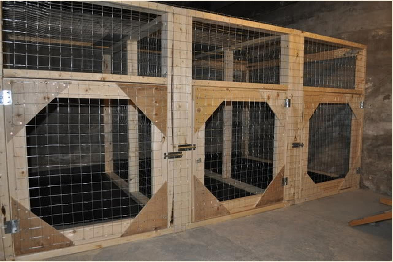 Best ideas about DIY Indoor Dog Kennel Plans . Save or Pin Want to Build Indoor Dog Kennels Help With Plans DIY Now.