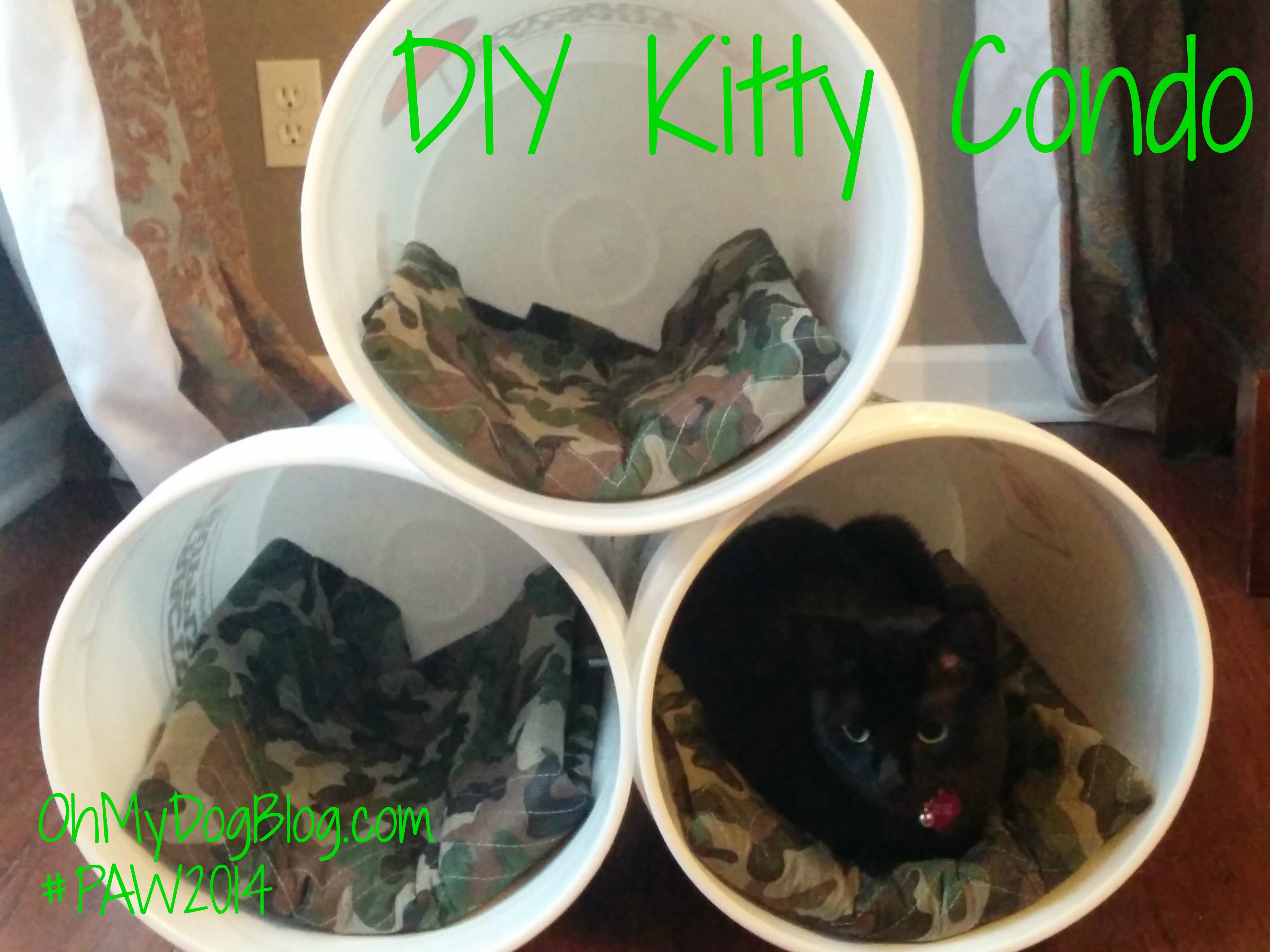 Best ideas about DIY Kitty Condo . Save or Pin Simple DIY Kitty Condo Using Tractor Supply Materials Now.