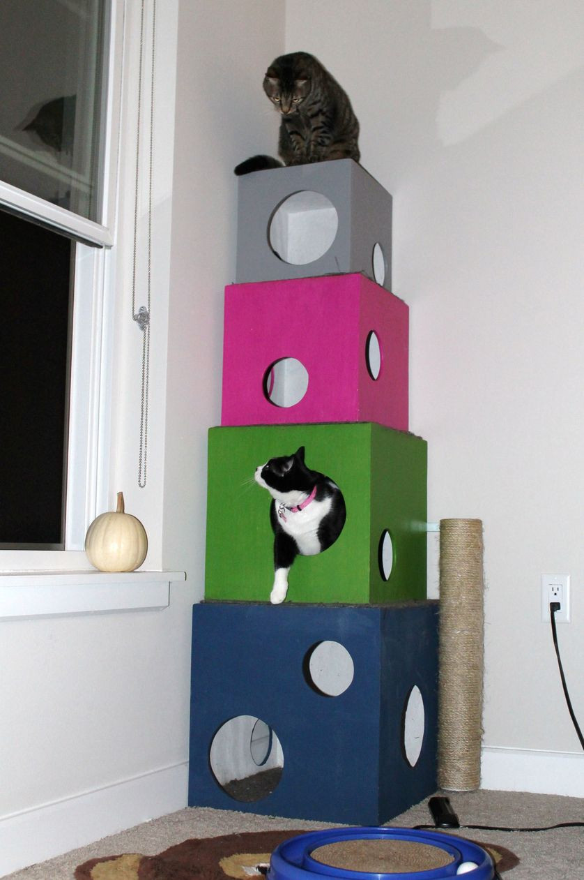 Best ideas about DIY Kitty Condo . Save or Pin 6 DIY cat trees to enrich your kitty s life Now.