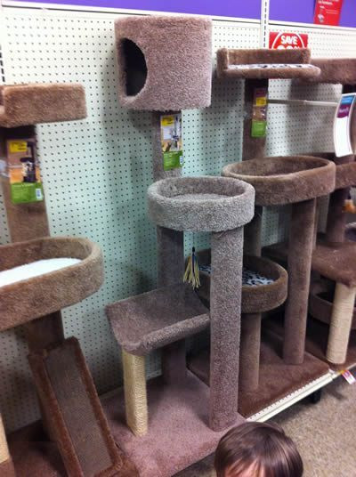 Best ideas about DIY Kitty Condo . Save or Pin How to build a DIY cat tower cat condo cat tree dadand Now.