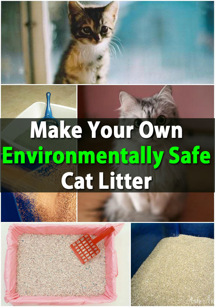 Best ideas about DIY Kitty Litter . Save or Pin Huge Money Saver Make Your Own Environmentally Safe Cat Now.