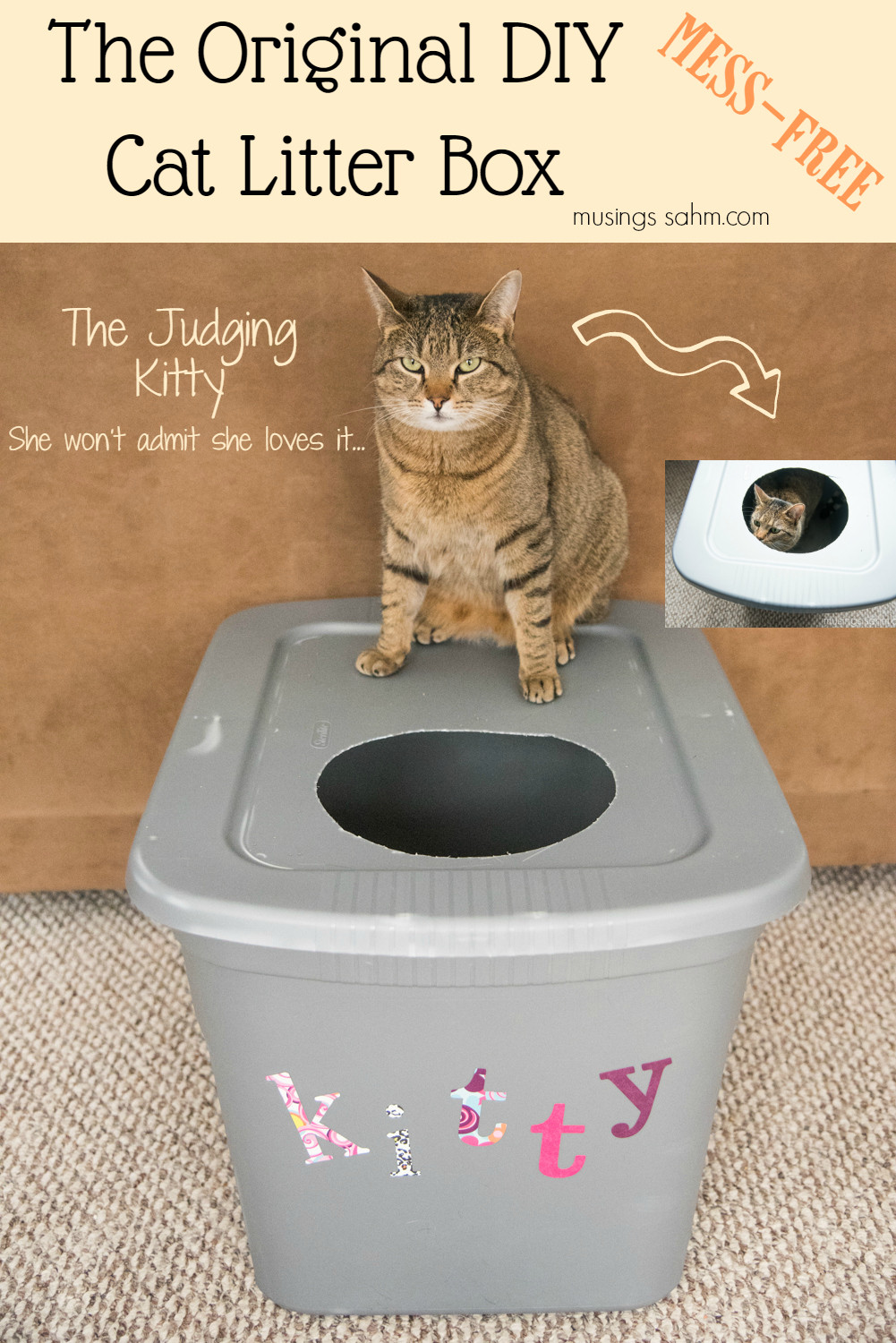 Best ideas about DIY Kitty Litter . Save or Pin The Original DIY Mess Free Cat Litter Box Musings From a Now.