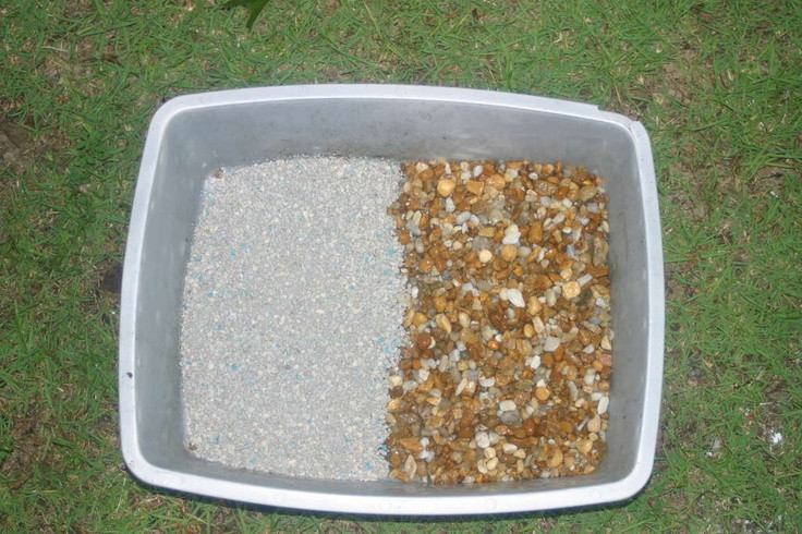 Best ideas about DIY Kitty Litter . Save or Pin Hmmmph DIY Kitty Litter interesting To do Now.