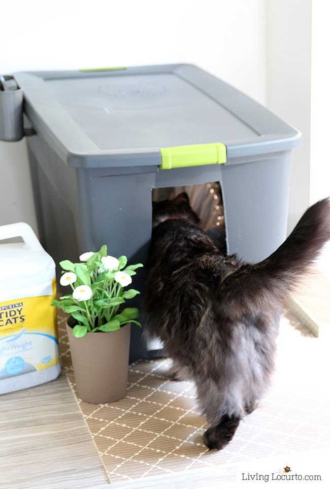 Best ideas about DIY Kitty Litter . Save or Pin DIY Cat Litter Box Holder Now.