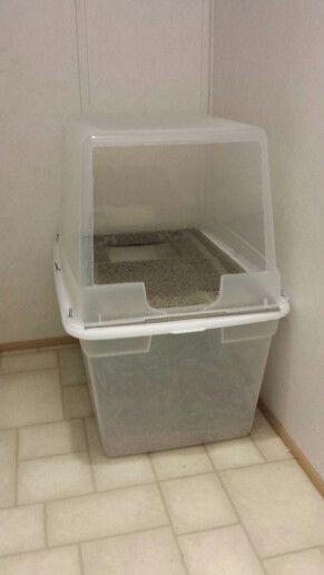 Best ideas about DIY Litter Box . Save or Pin Best 20 Cat Litter Boxes ideas on Pinterest Now.