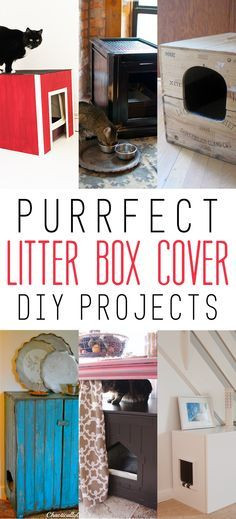 Best ideas about DIY Litter Box Cover . Save or Pin Purrfect Litter Box Cover DIY Projects Now.