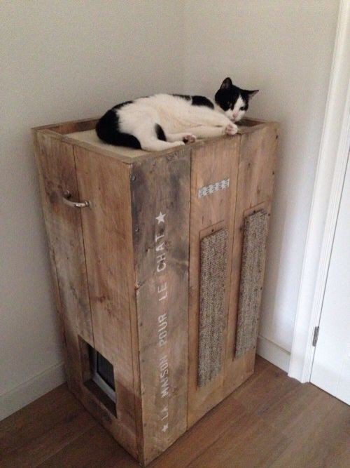 Best ideas about DIY Litter Box Enclosure . Save or Pin 8 Creative Ways to Hide Your Cat s Litter Box Now.