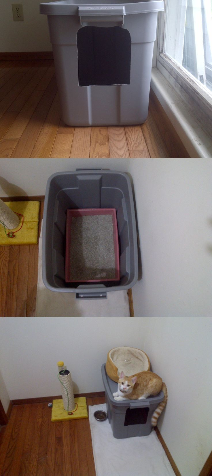 Best ideas about DIY Litter Box Enclosure . Save or Pin 318 best DIY Cat Projects images on Pinterest Now.