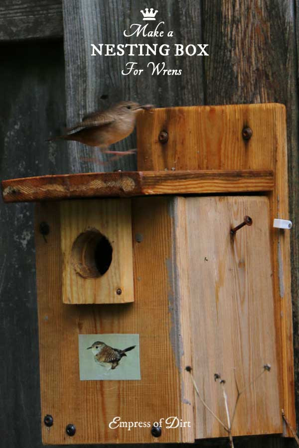 Best ideas about DIY Nest Box . Save or Pin DIY Birdhouses Make a Wren Nesting Box Empress of Dirt Now.