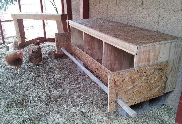 Best ideas about DIY Nest Box . Save or Pin How To Build a Chicken Nesting Box Now.
