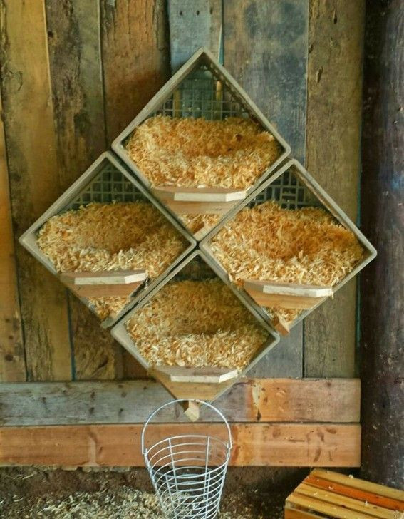 Best ideas about DIY Nest Box . Save or Pin Best 25 Chicken nesting boxes ideas on Pinterest Now.