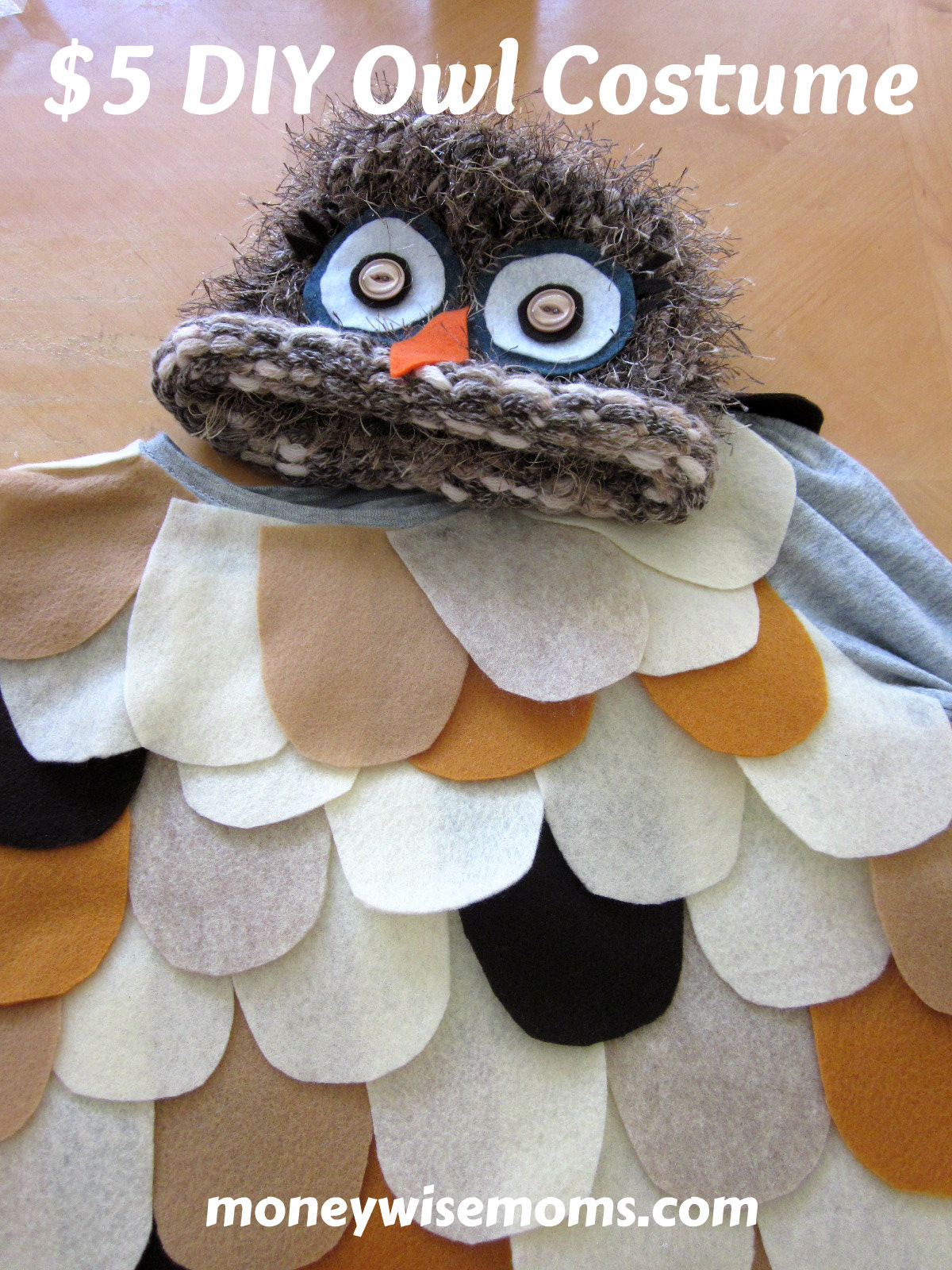 Best ideas about DIY Owl Costumes . Save or Pin The Most Adorable $5 DIY Owl Costume Moneywise Moms Now.
