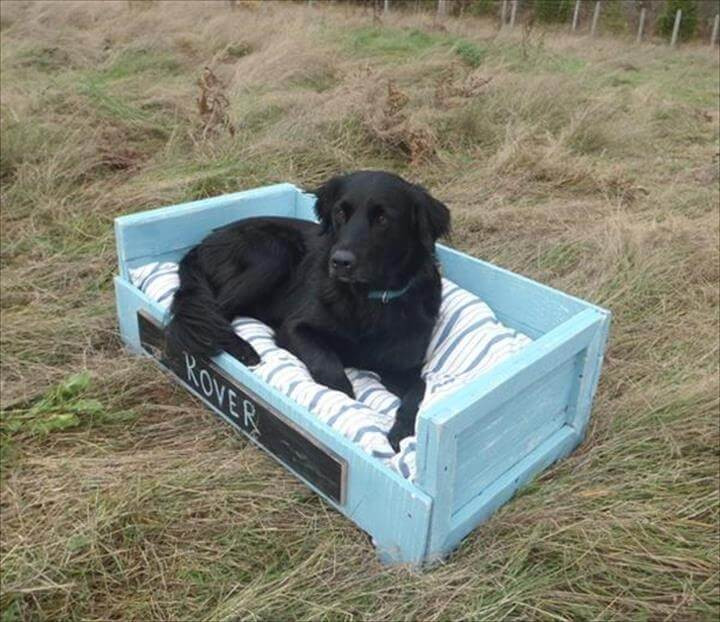 Best ideas about DIY Pallet Dog Beds . Save or Pin 10 DIY Pallet Dog Bed Designs Now.