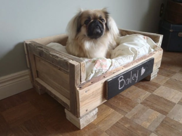 Best ideas about DIY Pallet Dog Beds . Save or Pin Cuccia fai da te 7 idee per costruire una cuccia per cani Now.