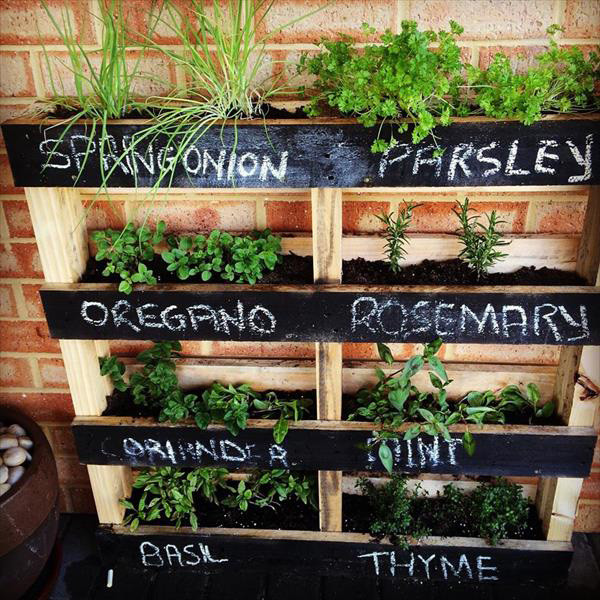 Best ideas about DIY Pallets Garden . Save or Pin 10 DIY Garden Ideas for Using Old Pallets Greenhouses NZ Now.