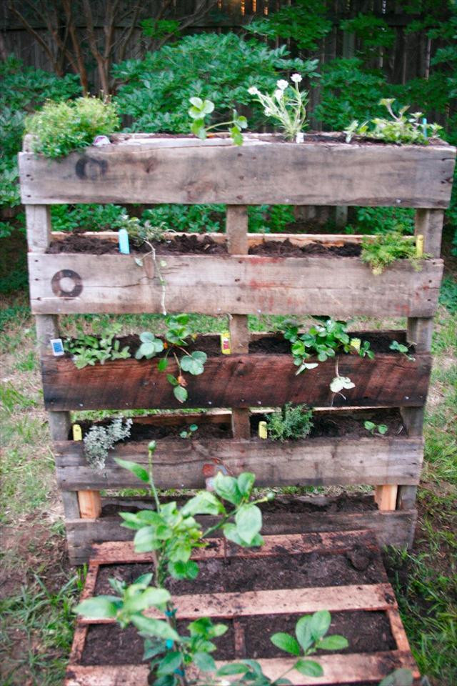 Best ideas about DIY Pallets Garden . Save or Pin 25 DIY Pallet Garden Projects Now.