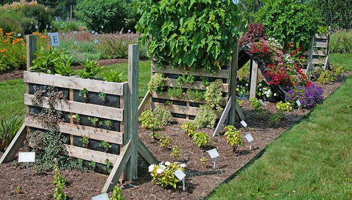 Best ideas about DIY Pallets Garden . Save or Pin Northeast Gardening DIY Pallet Gardens Now.