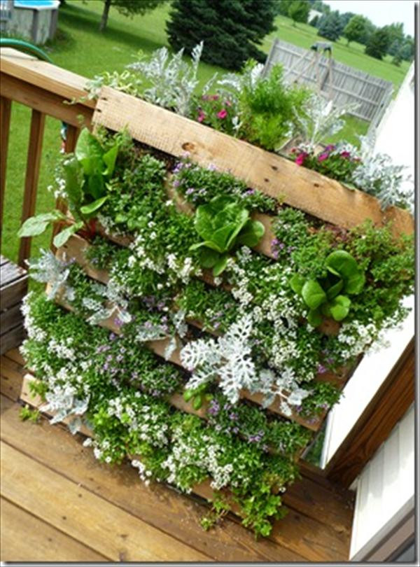 Best ideas about DIY Pallets Garden . Save or Pin DIY Vertical Pallet Garden Now.