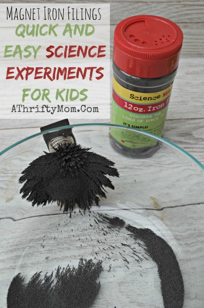 Best ideas about DIY Science Experiments For Kids . Save or Pin DIY round up easy kid crafts Easter fun and Science Now.