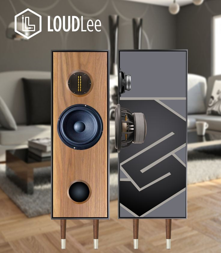 Best ideas about DIY Speaker Plans . Save or Pin Image result for ribbon tweeter and woofer dust cap Now.