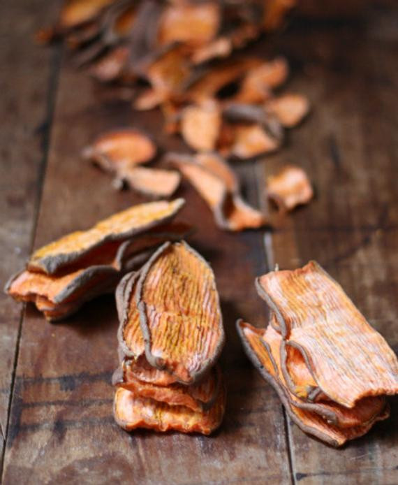 Best ideas about DIY Sweet Potato Dog Treats . Save or Pin Buy 3 Get 1 Free Homemade Dried Sweer Potato DOG JERKY Now.