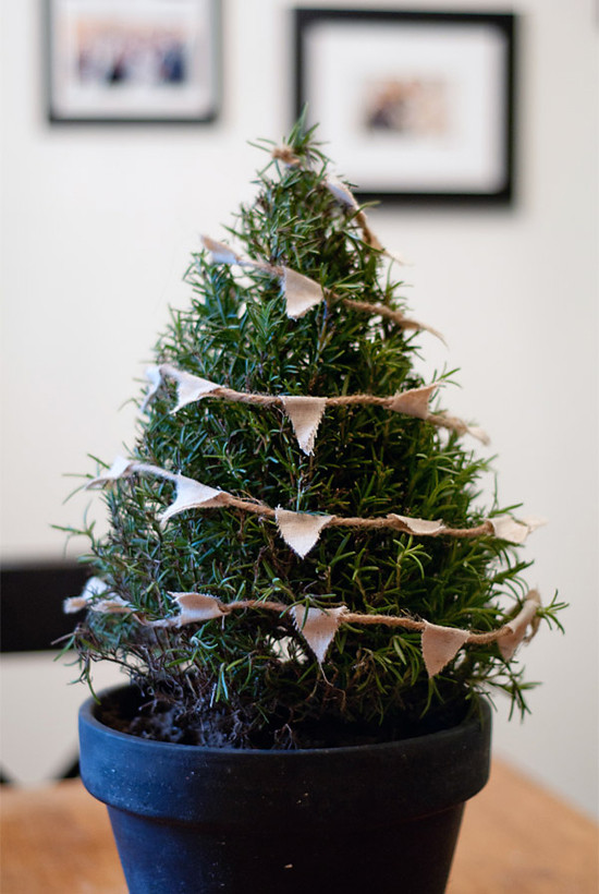 Best ideas about DIY Tabletop Christmas Tree . Save or Pin 3 real mini Christmas trees diys Now.