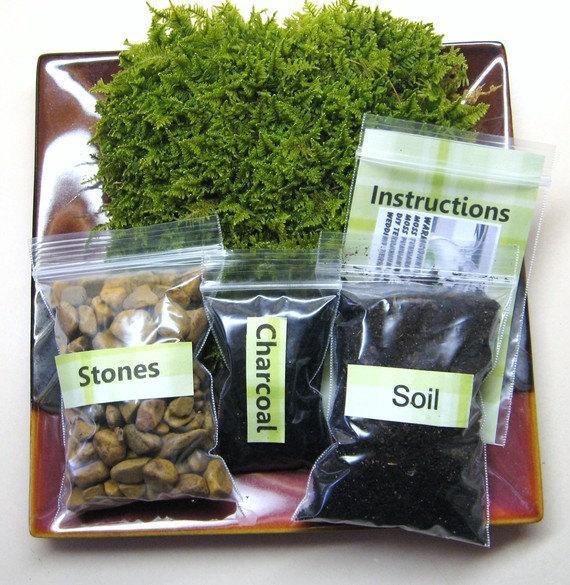 Best ideas about DIY Terrarium Kits . Save or Pin FATHERS DAY GIFT Moss Terrarium Kit diy Moss Terrarium Now.