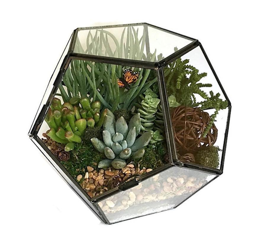 Best ideas about DIY Terrarium Kits . Save or Pin Geometric Succulent Terrarium Kit Succulent DIY Now.