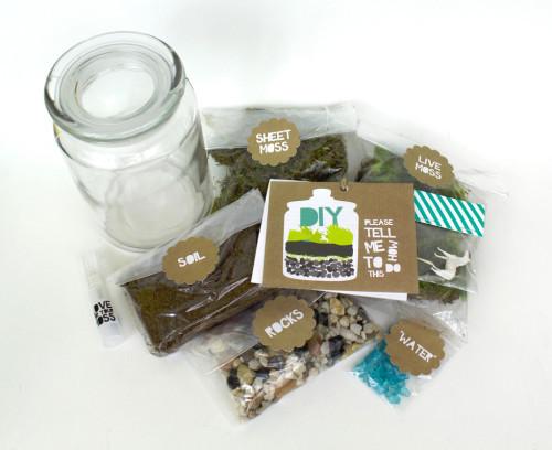 Best ideas about DIY Terrarium Kits . Save or Pin DIY Moss Terrarium Now.