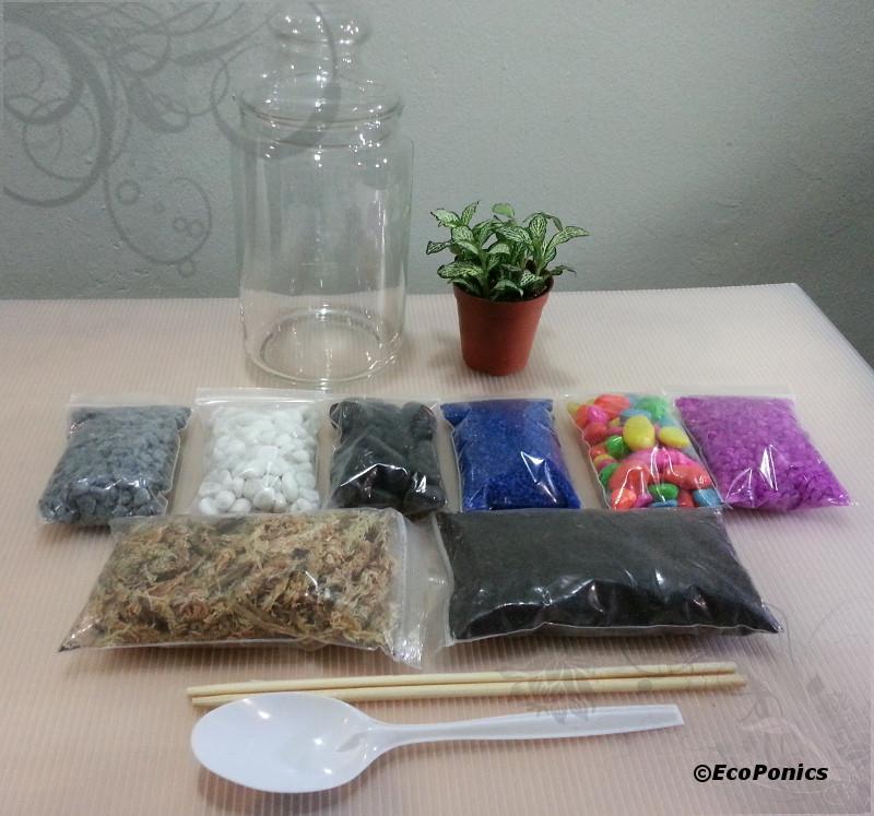 Best ideas about DIY Terrarium Kits . Save or Pin Terrarium DIY kit Singapore Now.