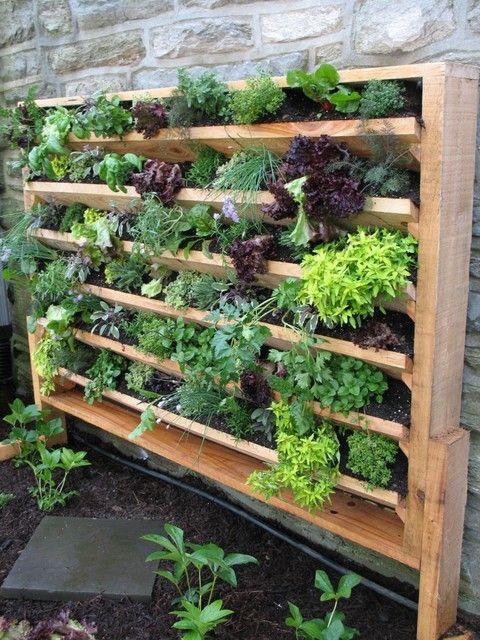 Best ideas about Diy Vertical Garden Wall . Save or Pin 17 best ideas about Vertical Gardens on Pinterest Now.