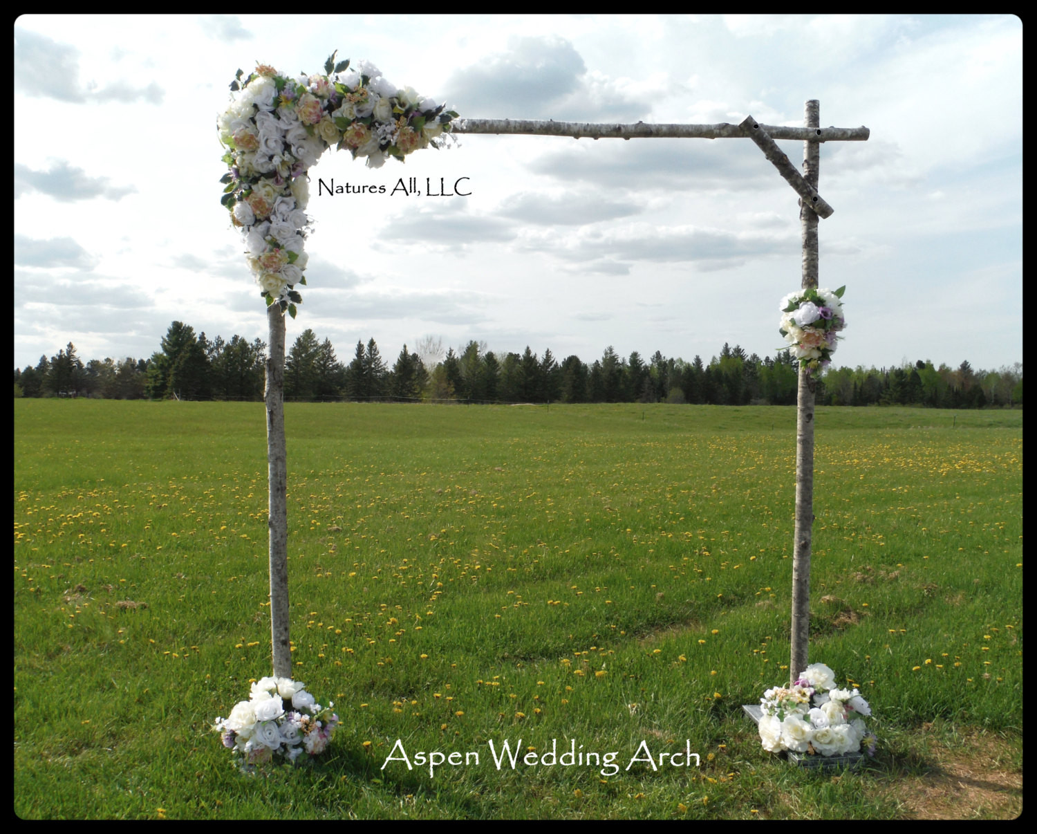 Best ideas about DIY Wedding Arch Kits . Save or Pin Aspen Wedding Arch Aspen Arbor plete Kit For Indoor Or Now.