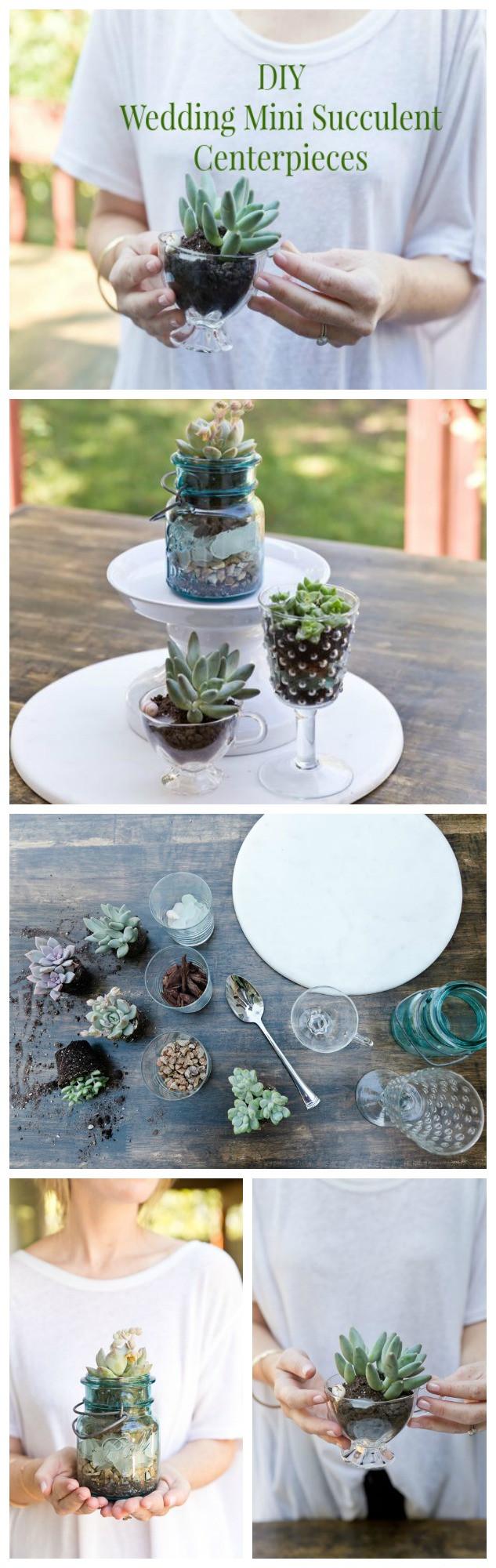 Best ideas about DIY Wedding Centerpieces . Save or Pin DIY Wedding Succulent Centerpieces Rustic Wedding Chic Now.