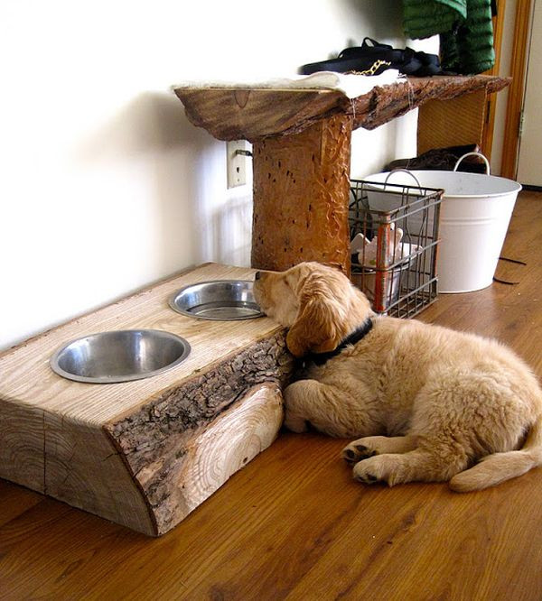 Best ideas about Dog Bowl Stand DIY . Save or Pin 10 Creative DIY dog bowl ideas for your pet Now.