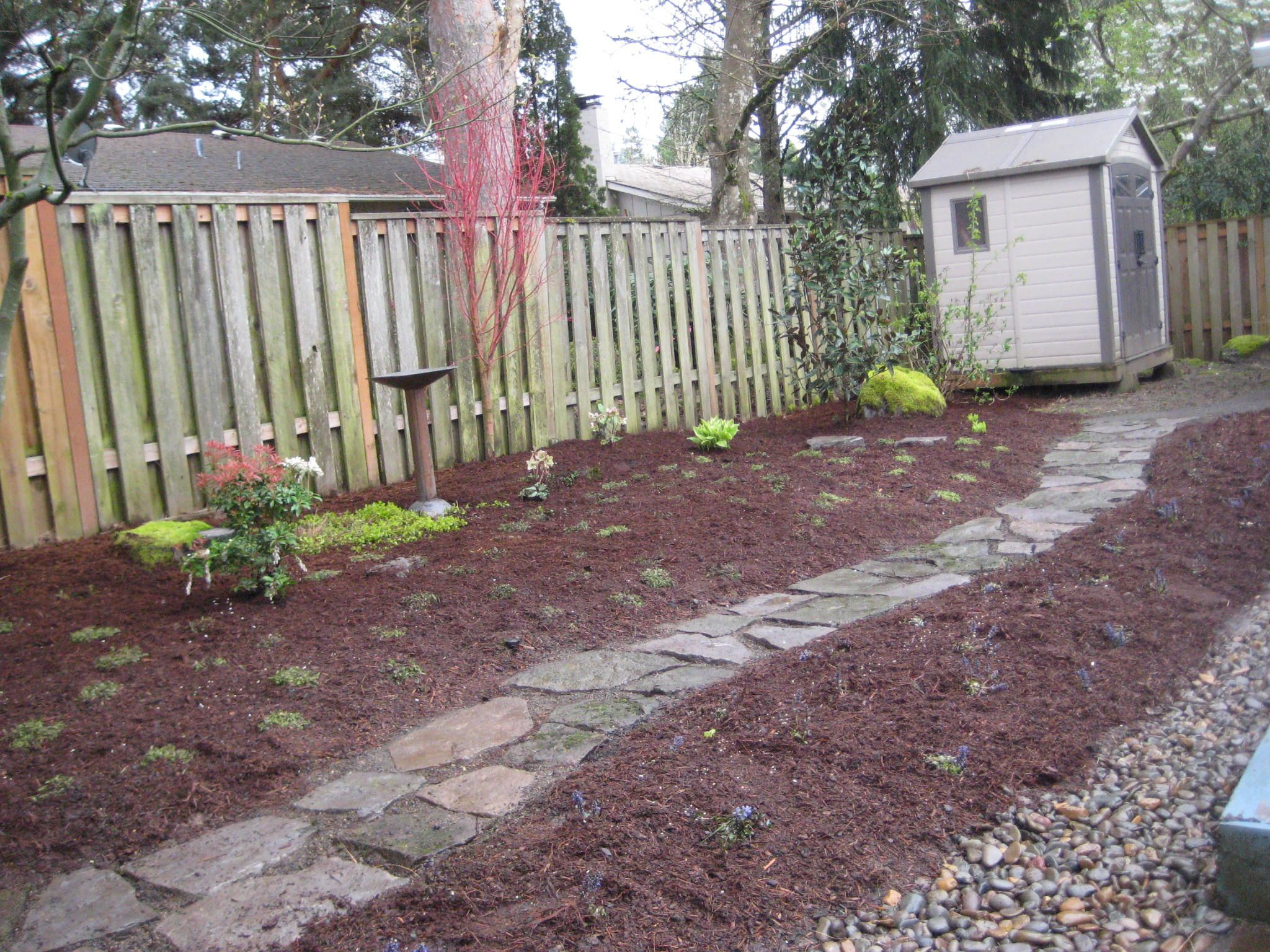Best ideas about Dog Friendly Backyard . Save or Pin Cheap Backyard Ideas Dog Friendly Now.